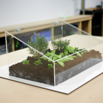 Mini-Gewächshaus selber bauen in 5 Schritten